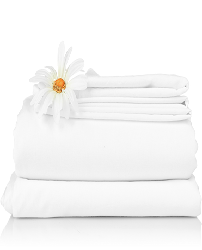 Salon Linen Rentals